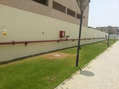 IFF factory outdoor
